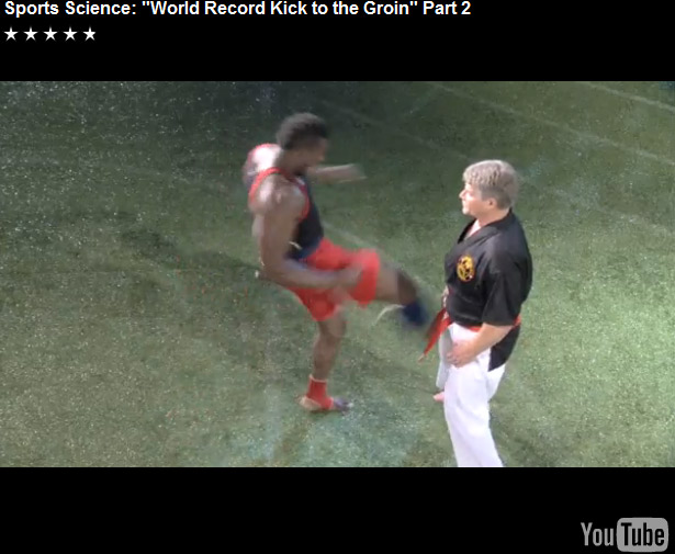World record kick in the nuts…ouch